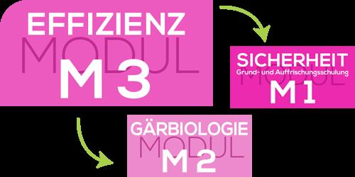 INTENSIV_module_m3